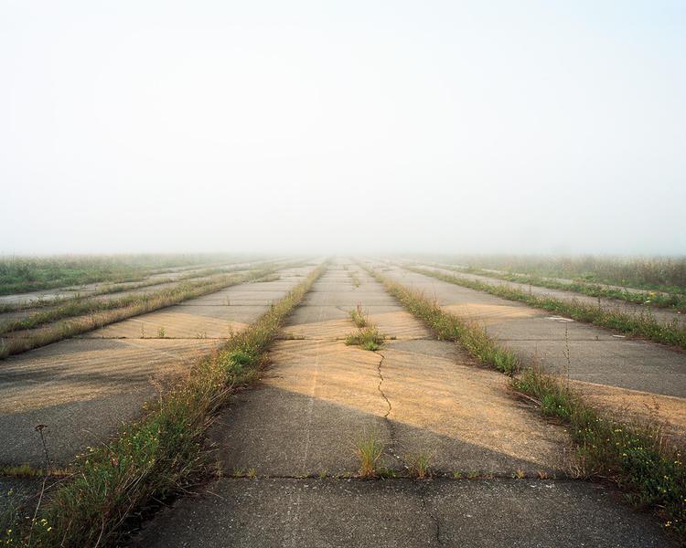 Grassland 4535_3