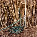 Garden hose, Costa Mesa, CA, From