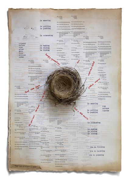 Every Nest is a Breeding Nest