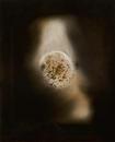 Dark Hours Untitled 2014