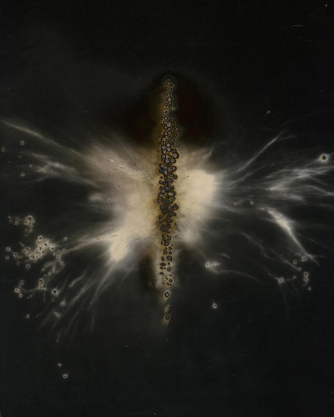 W.O.F. Vertical #1 13 5/8 x 10 5/8  2011