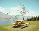Picnic Table, Queenstown, New Zealand