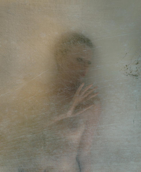 Gentle gesture 2009