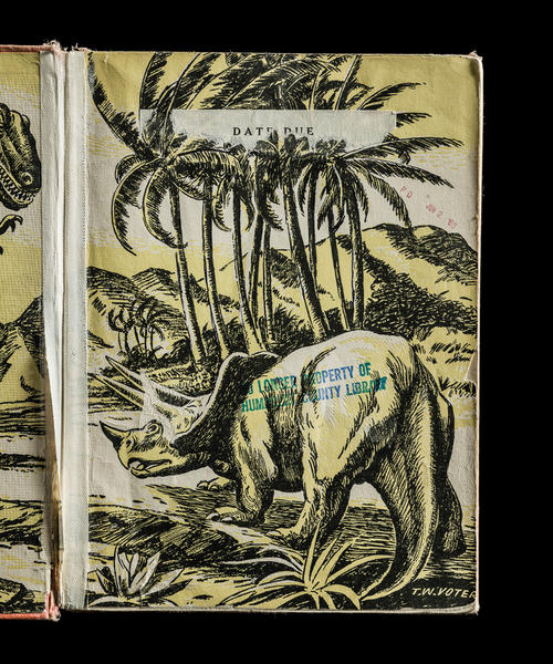 All About Dinosaurs, Interior Right Page