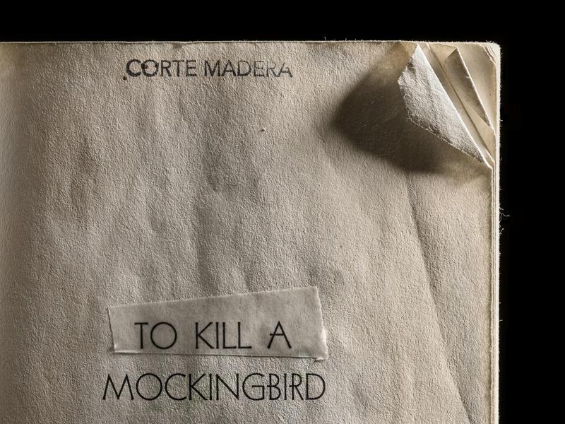 To Kill a Mockingbird, Dog-Eared Corner