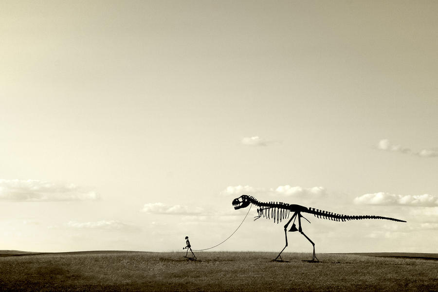 Evolution--Stamford, SD
