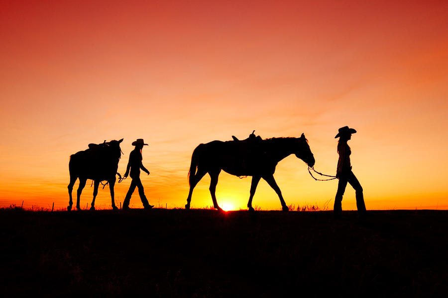 Off to the Barn--Havre, MT
