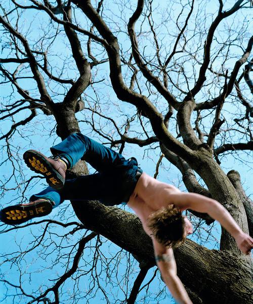 Blue Tree © 2002