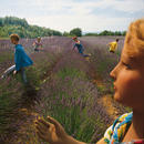 The Field of Lavenders
