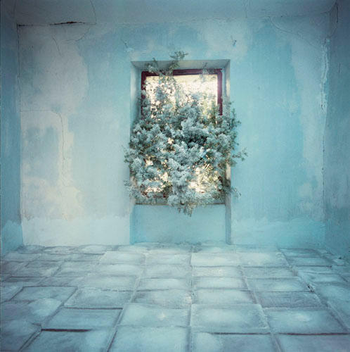 The Room in Winter
