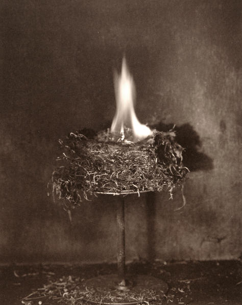 The Nest IV