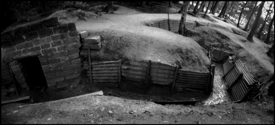 Trench, Hill 62, Ypres, Belgium (Ypres Trench)