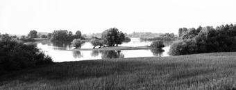 Ooijpolder, July 2002