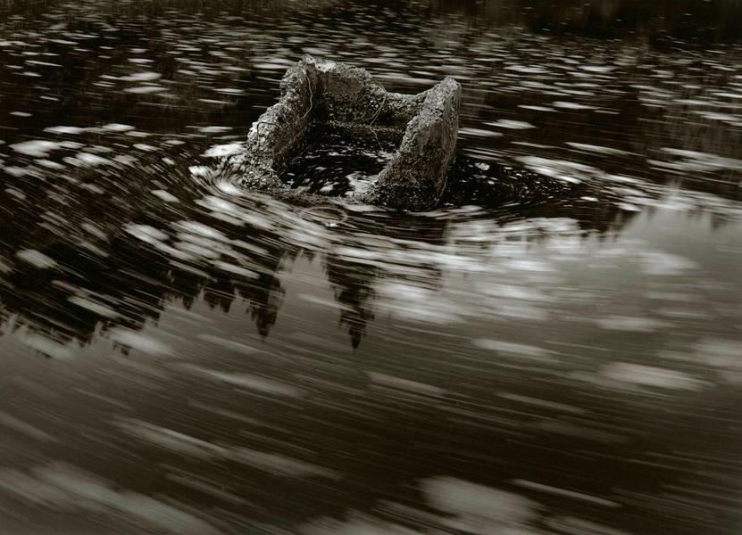 Drifting Pond Weeds