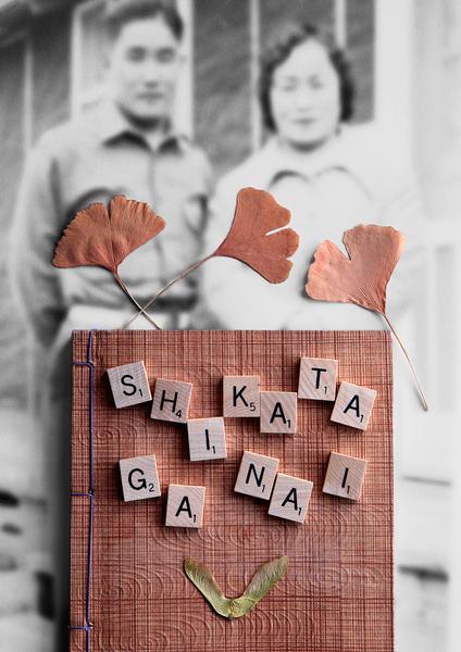 Shikata Ga Nai (It cannot be helped)