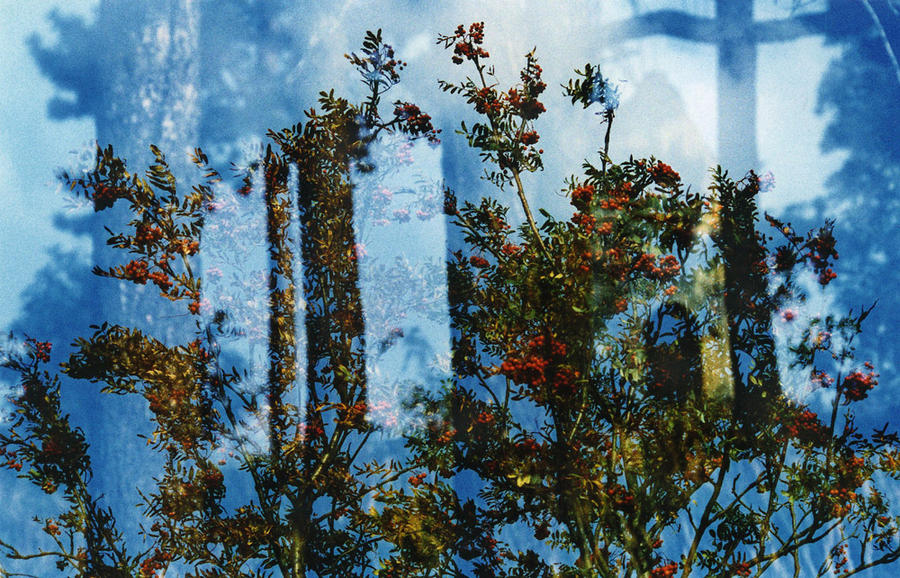 from the series 'Landscapes in My Eye' (2003)