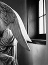 Passing Angel, Apse Santa Cruz de la Canada. NM