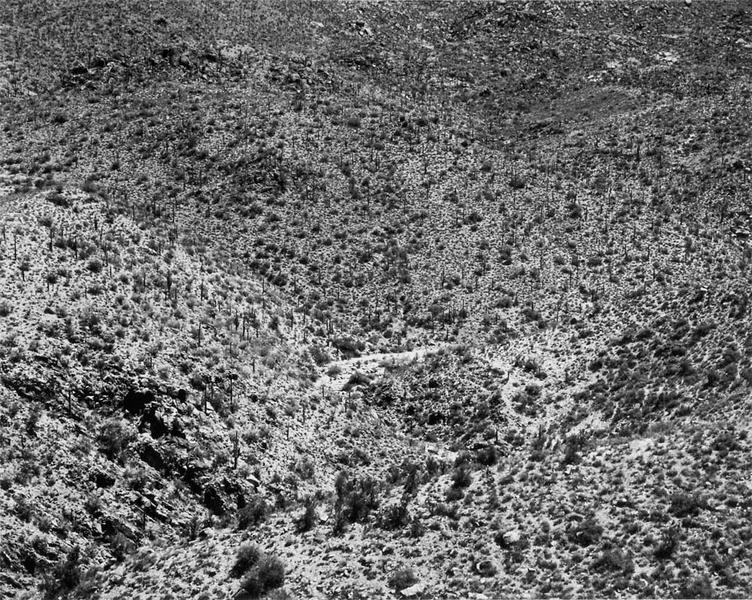 Arizona Landscape, 1943
