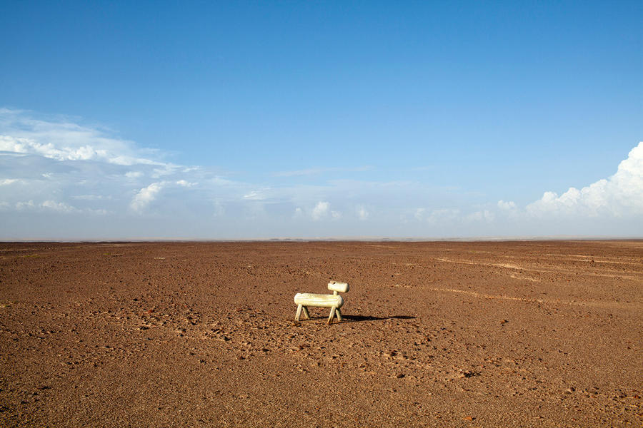 Dog-Namibia