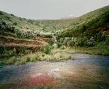 El Teide, view #06