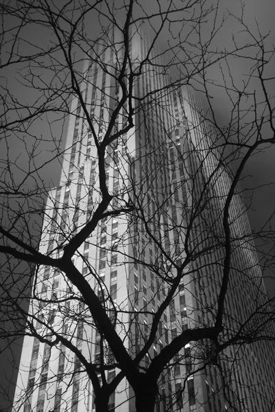 Touch the Sky, New York City, 2009
