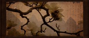 China, Magnolia