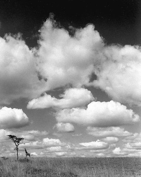 Tanzania, 1953