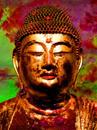 Buddha, 12  2010