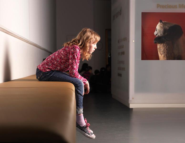 Precious Life, The Royal Museum of Scotland, 2009