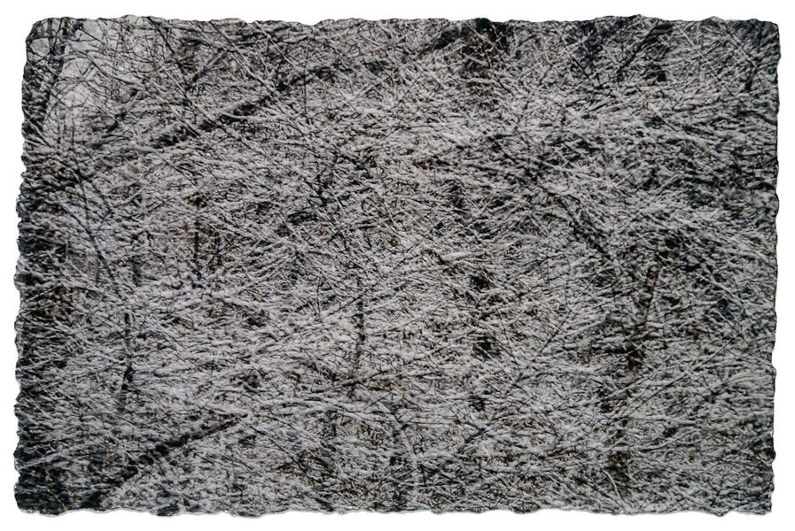 Snow 3, Central Park Collection