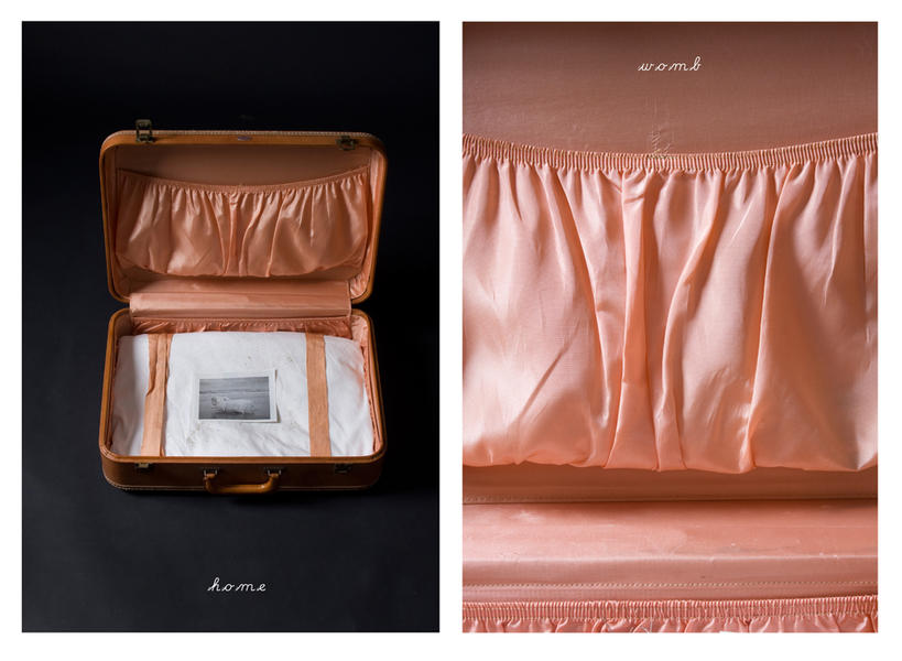 Home-Womb diptych