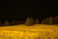 Yellow series, landscape, night