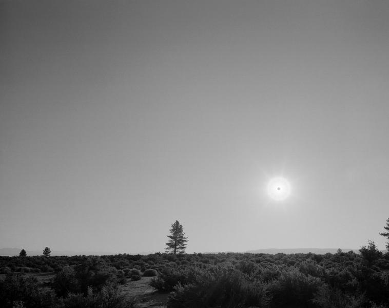Black Sun, Mono Lake, CA 6/25/03