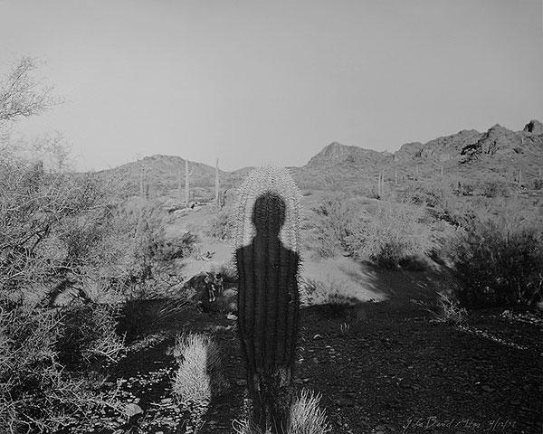 Watching the Children Play, Gila Bend Mountains