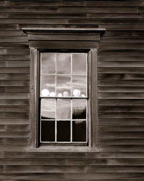 Exterior Window with Shells