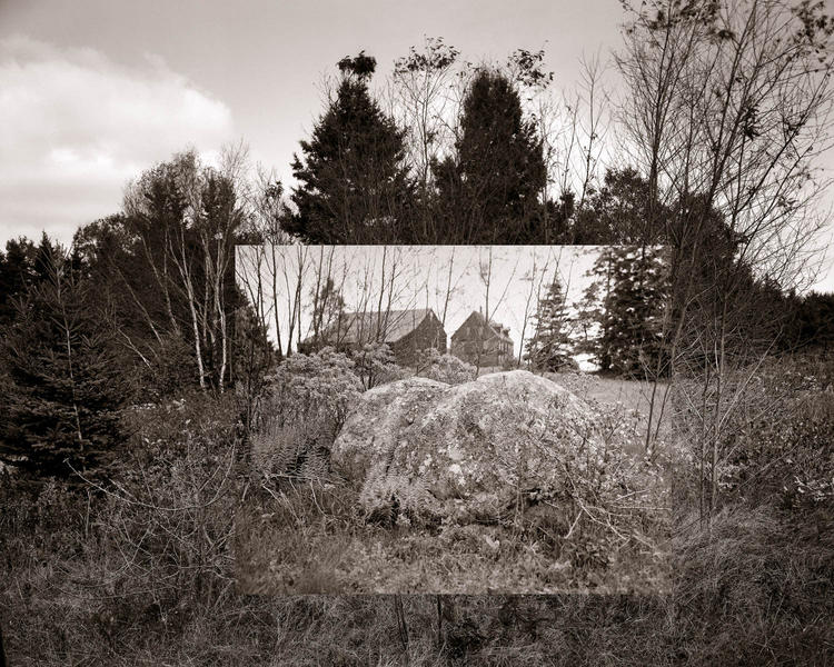 Granite and Lichen…after early Linda Connor