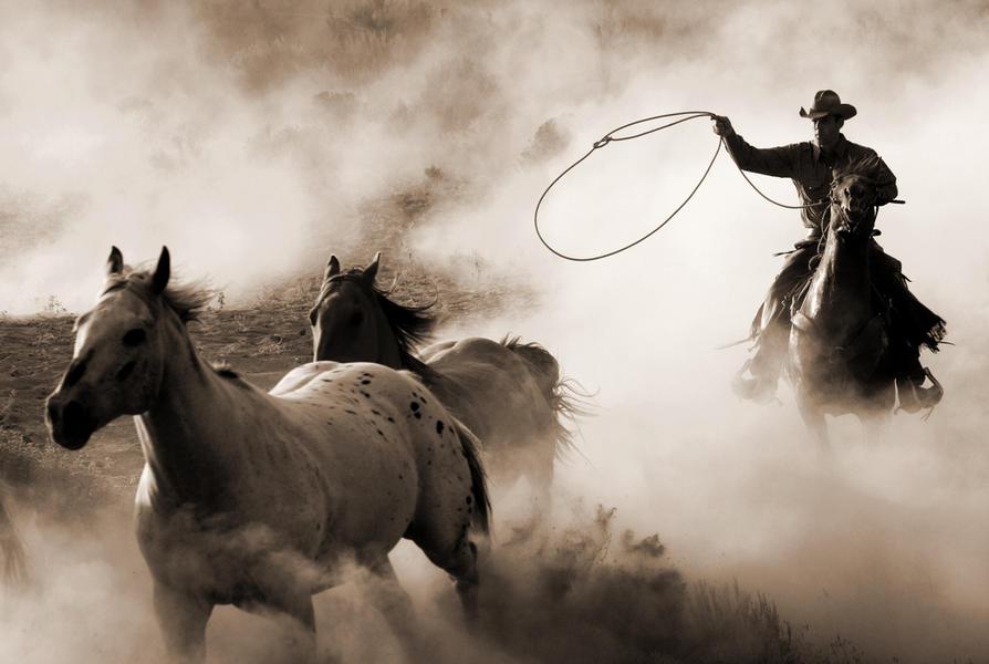 Hooves & Dust 7