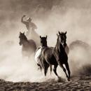Hooves & Dust 27