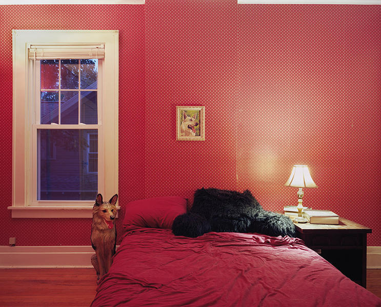 Untitled Interior (german shepherds)