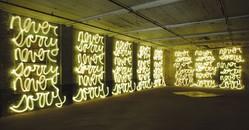 Jasmine/Never Sorry (for Ai Weiwei), 2011