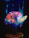 Bouquet No. 01 / 28
