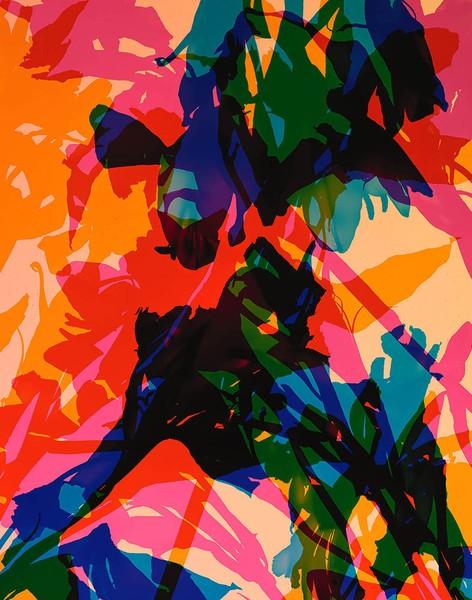 Castrato No. 04 / 28' x 22' / Ed. of 6