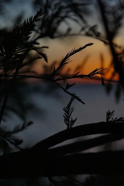 Lakes End (Precurser to Night)
