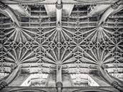 Oxford, Pendantlierne Vault