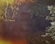 Exposed Fog, 2013