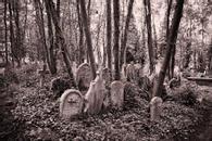 Highgate Cemetery, London, England, 2003