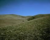 Brushy Peak Regional Preserve, Altamont Pass