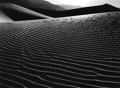 Mesquite Flat #24, 1988