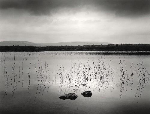 Lough Bunny, 1986