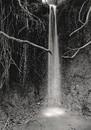 Waterfall With Liight, 1982